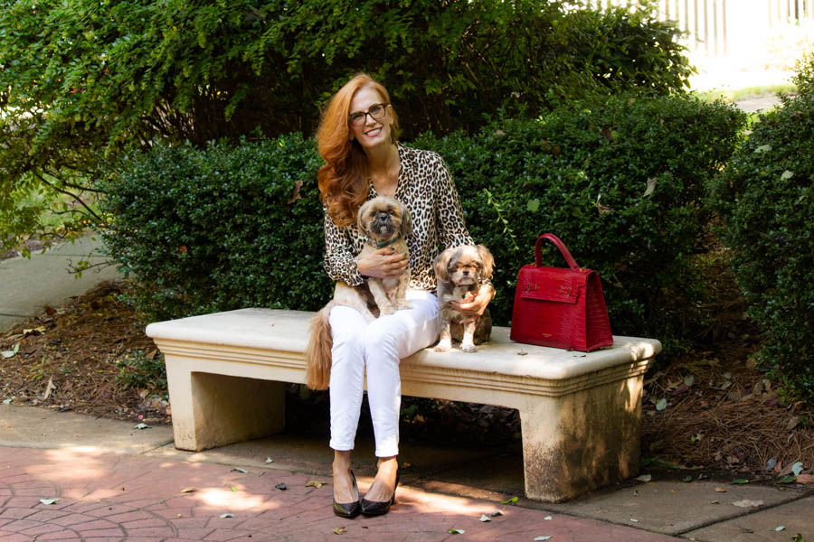 leopard blouse with white denim and red bag and shih tzus